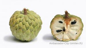 Описание и фото сахарного яблока (фрукт аннона)