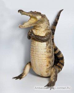 Крокодилы и их чучела запрещено вывозить из Тайланда