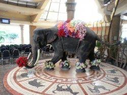Кхао Кхео: статуя слона в главном здании