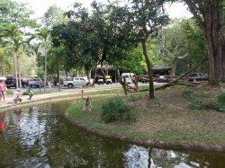 Кхао Кхео: обезьяны очень любит позировать посетителям зоопарка