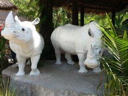 Кхао Кхео: эти два носорога очень красивы, хоть и статуи :)