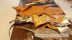 Leather World: образцы кожи
