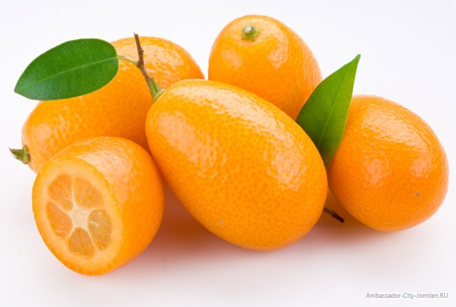 Кумкват что это за фрукт